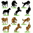 12 Horses Silhouettes Set — Stock Vector #6814966