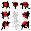 Kyokushin karate silhouettes set — Stock Vector