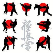Set de siluetas de karate kyokushin — Vector de stock