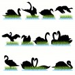 12 Swans Silhouettes Set — Stock Vector