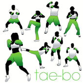 Tae-Bo Silhouettes Set — Stock Vector
