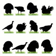 Royalty-Free Stock Vector Image: 12 Turkey silhouettes set