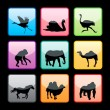 Wild Animals Silhouettes Set — Stock Vector