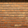 Brick wall — Stock Photo #6863042