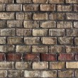 Brick wall — Stock Photo #6863207