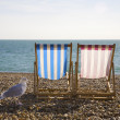 Seagul and Deckchairs, Brighton — Stock Photo #6824912