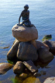 Little Mermaid Statue, Copenhagen — Stock fotografie