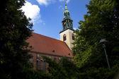 Marienkirche (St. Mary's Church) in Berlin — Stockfoto