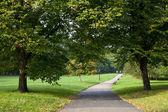 Green Park, London — Stock Photo