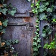 Rusty iron door — Stock Photo