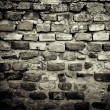 Old brick wall — Stock Photo #6830668