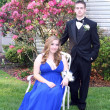 Stock Photo: Prom Couple Smiling and Serious