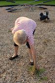 Community Service Grandma — Stock Photo