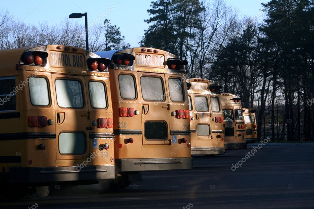Back view of a line of school buses in early morning shadows. — Stock Photo #6847597