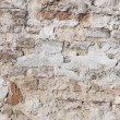 Old wall — Stock Photo #6787590