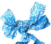 A bright blue bow isolated — Stock Photo