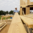 Carpenter — Stock Photo #6747830