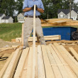 Carpenter — Stock Photo #6747833