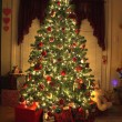 Christmas tree 1 — Stock Photo #6754633