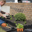 Working in garden — Stock Photo #6754750