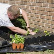 Working in garden — Stock Photo #6754752