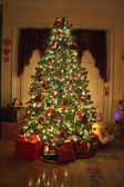 Christmas tree 1 — Stock Photo