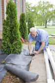 Landscaper Planting — Stock Photo