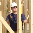 Carpenter — Stock Photo #6787327