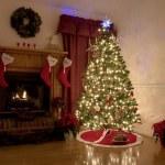 Christmas at home — Stock Photo #6817210