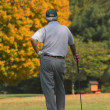 Fall Golfing — Stock Photo #6925980