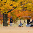 Fall Golfing — Stock Photo #6925990
