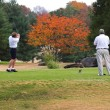 Fall Golfing — Stock Photo #6925991