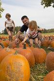 Kids and Pumpkins — Stock Photo