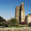 Maidens tower in baku azerbaijan — Stock Photo #6769062