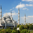 Sultan ahmed mosque in istanbul turkey - Stock Photo