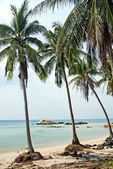 Spiaggia esotica tropicale vicino phuket Thailandia — Foto Stock