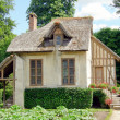 Old cottage — Stock Photo #6769845