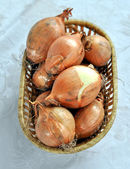 Onions — Stockfoto