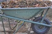Old wheelbarrow with compost — Stock Photo