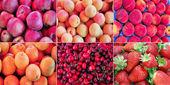 Collage de frutas — Foto de Stock