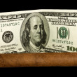 Cigar and Dollars - Stock Photo