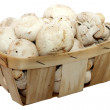 Basket with champignons — Stock Photo