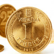 Ukraine Coins — Stock Photo #7892756