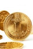 Ukraine Coins — Stock Photo