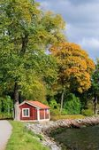 Autumn in Sweden — Stock Photo
