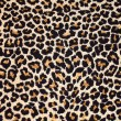 Stock Photo: Abstract texture of leopard fur (skin)