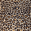 Abstract texture of leopard fur (skin) - Stock Photo