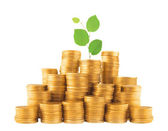 Golden coins in column with green plant isolated on white — Stock Photo