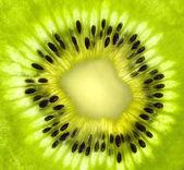 Fresh kiwi slice background — Stock Photo