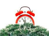 Albero di natale verde e orologio isolato su bianco — Foto Stock